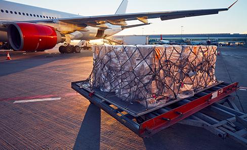 Chargement de marchandises dans un avion d'une grande compagnie aérienne de transport