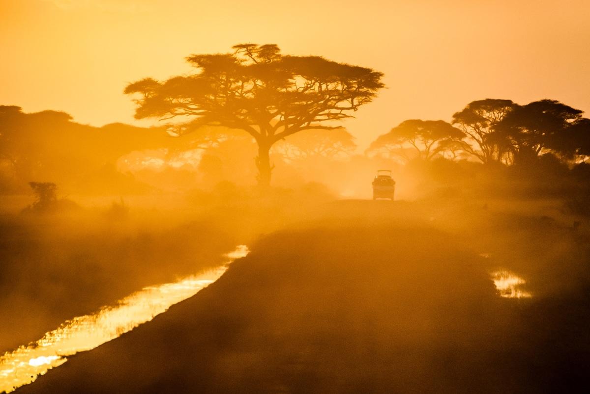 Paysage de la savane sur couché de soleil orange en afrique